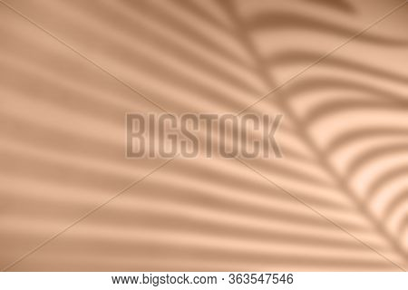 Shadow Of Palm Leaf On Natural Earthy Colors Background. Creative Drawing Of Light And Shadow For Yo