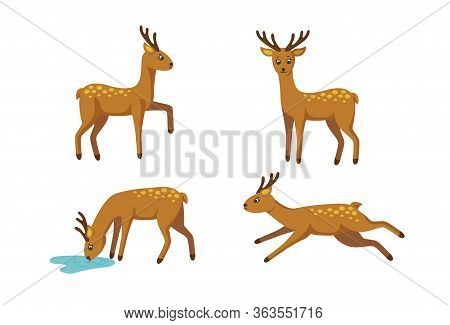 Set Of Four Deers For Cute Patterns And Designs. Vector Illustration In Cartoon Style