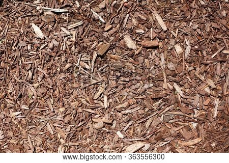 Texture background of brown wood chip mulch.