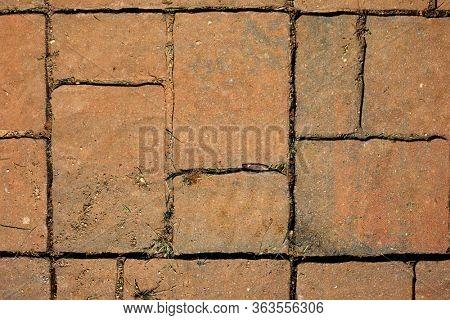 Brown Garden Path Stones with Grass Between
