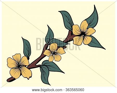 Magnolia Branch With Leaves In Japanese Style On White Background. Floral Background. Vector Isolate