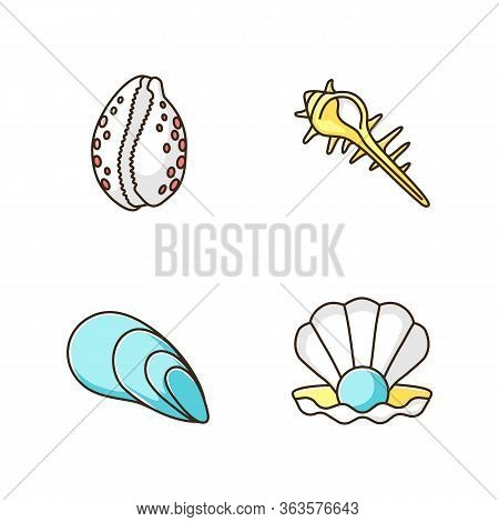 Different Sea Shells Rgb Color Icons Set. Seashells Collection, Conchology Open Clam With Pearl, Spi