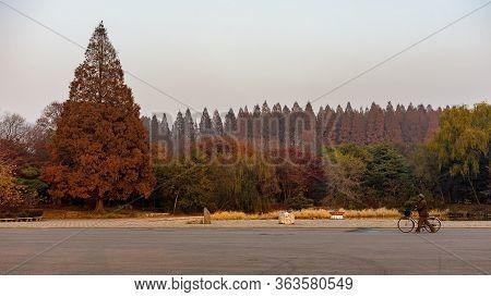 Pyongyang / Dpr Korea - November 10, 2015: Park At Mangyongdae, Birthplace Of North Korean Leader Ki