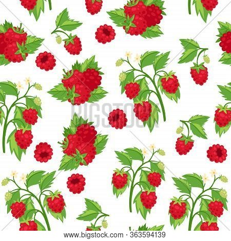 Raspberries Fresh Red Berries And Leaves Isolated On White Background Cartoon Seamless Vector Patter