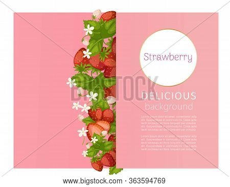 Strawberry Pink Banner With Berries And Leaves And Typography Cartoon Vector Illustration Flyer Cove