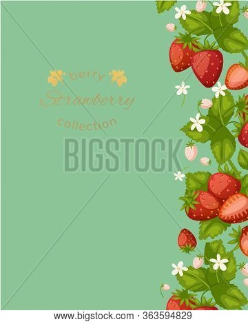 Strawberry Green Poster With Berries And Leaves And Typography Cartoon Vector Illustration Flyer Cov