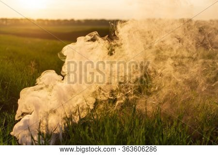 The White Smoke In Grass Against Evening Sun. Golden Time.
