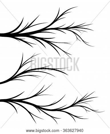 Set Of 3 Black Vector Floral Branches For Your Design