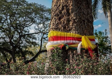 A Colorful Cloth Wrapped Around A Big Tree With Faithful In The Park, Belief In Religion To Health A