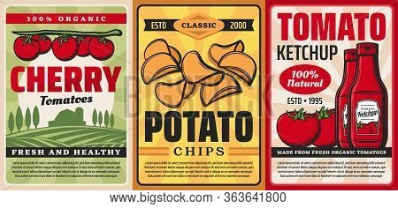 Farm Products From Tomatoes And Potatoes, Vector Retro Posters. Natural Organic Cherry Tomatoes, Ket