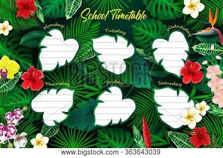 School Education Weekly Timetable Schedule With Leaves. Vector Shedule Template With Tropical Palm,