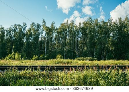 Railway On The Background Of A Birch Forest. Bright Summer And Sunny Day
