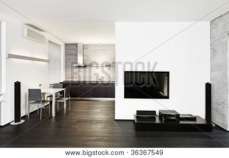 Modern minimalism style kitchen and drawing room interior in monochrome tones