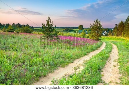 Spring Amazing Landscape With A Blossoming Meadow, Road And Farm. Summer  Wild Flowers On Field.  Pu
