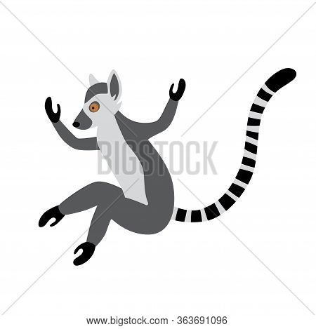 Cute Funny Ring-tailed Lemur Jumps. Exotic Lemur Catta. Vector Illustration In Cartoon And Flat Styl