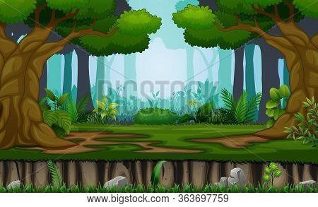 Many Trees On The Forest Background Illustration