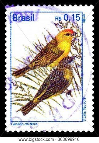 Stavropol, Russia - April 29. 2020:: A Stamp Printed In Brazil Shows A Canary-on-terrae, Canário-da-
