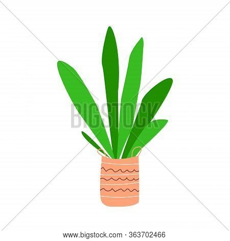 Home Deciduous Plant With Green Leaves In A Decorative Pot. Floriculture Hobby. Stock Vector Simple