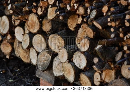 Closeup Of Woodpile Of Cut Firewood Logs And Branches. Rustic Fuel Concept. Rough Wooden Textures Of