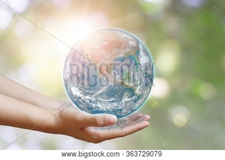 International Day Of Forests And Earth Day Concept: Hands Holding Blue Earth Globe Over And Green Le