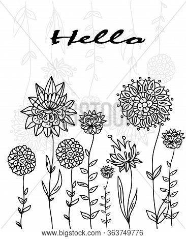 Vector Pattern With Flowers On A Nambel Background, Plain Contrast