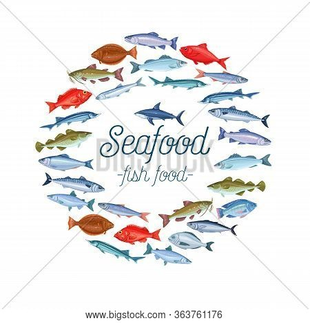 Vector Fish Banner Layout With Bream, Mackerel, Tunny Or Sterlet, Catfish, Codfish And Halibut. Cart