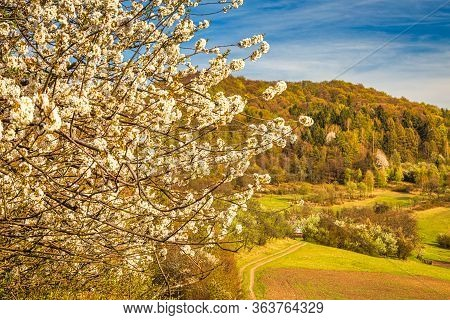 Spring Landscape Near The Klapy Nature Reserve In Northwestern Slovakia, Europe.