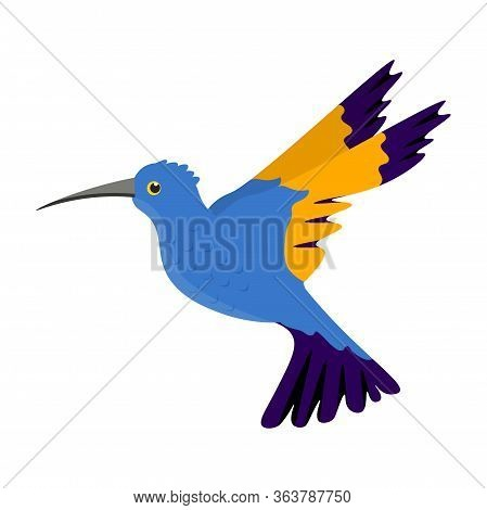 Beautiful Graceful Flying Blue Humming-bird Colibri With Yellow Wings, Long Beak. Small Exotic Bird