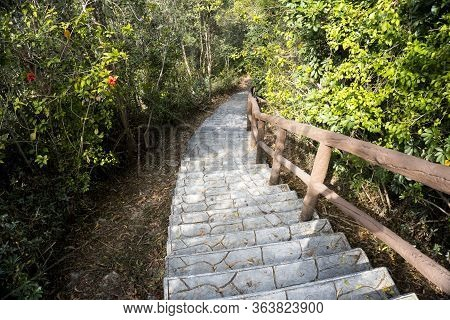 Stone Stairway, Stair, Trail, Footpath, Country Road, Alley, Lane In Hong Kong Forest As Background,