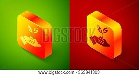 Isometric Plant In Hand Of Environmental Protection Icon Isolated On Green And Red Background. Seed