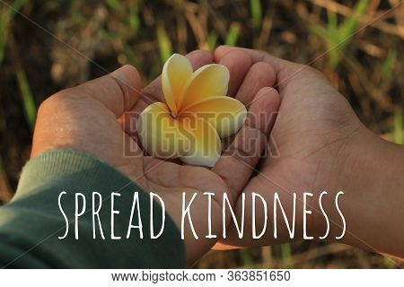 Inspirational Words - Spread Kindness. With Yellow Bali Frangipani Flower In Hands Of Mother And Dau