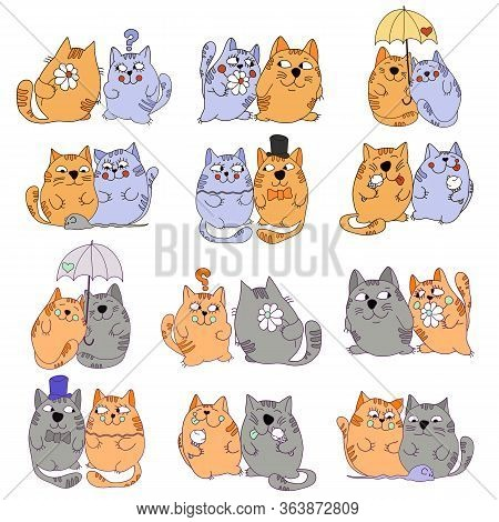 Vector Drawn Cats Are Doing Different Things On A White Background