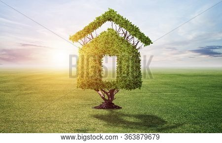 Green Plant In Shape Of House Grows At Green Field. Nature Landscape With Summer Meadow And Blue Sky