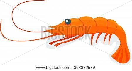 Seafood Shrimp, Ocean Delicacy Food Isolated On White Cartoon Vector Illustration. Prawn For Grill,