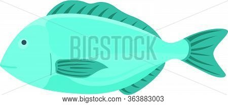 Fresh Fish, Cartoon Style Flat Vector Illustration Dorada. Concept Minnow Seafood. Sea Product For S