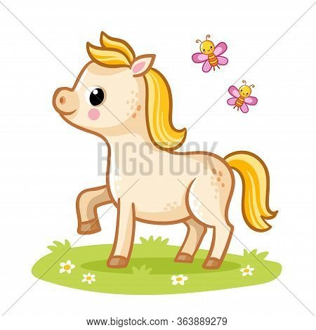 Little Cute Foal With A Golden Mane Standing In The Meadow With Butterflies. Vecton Illustration Wit