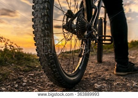 Mountain Bike Rear Wheel Detail. Back Shot Of Mountain Bike On Sunset. Mountain Bike Tire.