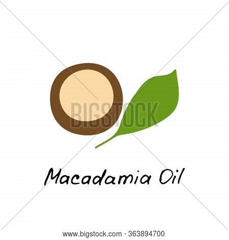 Macadamia Oil. Cosmetic Ingredient. Nutritional Oil For Skin Care. Hand-drawn Icon Of Macadamia Nut.