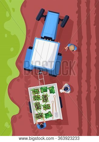Harvesting Plants Semi Flat Vector Illustration Top View. Cultivating Organic Crop. Produce Natural