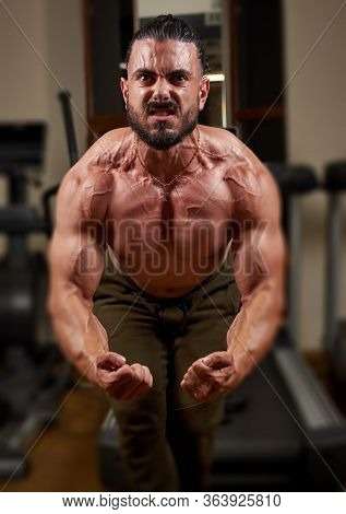 Bodybuilder Training His Muscles In Gym, Bodybuilder Training With Dumbbell