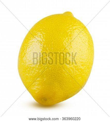 Lemon Whole Isolated On White Background. Beautiful Fresh And Tasty Citrus Fruit Close Up. Shiny Yel