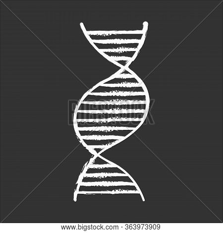 Right-handed Dna Helix Chalk Icon. B-dna. Deoxyribonucleic, Nucleic Acid. Spiral Strand. Chromosome.