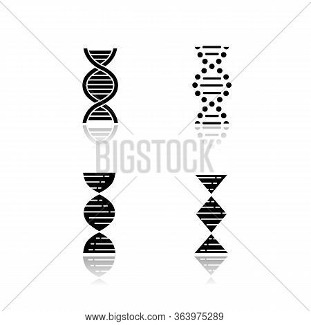 Dna Spiral Strands Drop Shadow Black Glyph Icons Set. Deoxyribonucleic, Nucleic Acid Helix. Spiralin