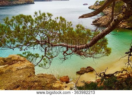 The Beautiful Sunny Summer Beach Landscape Of Cala Saladeta In Ibiza Island