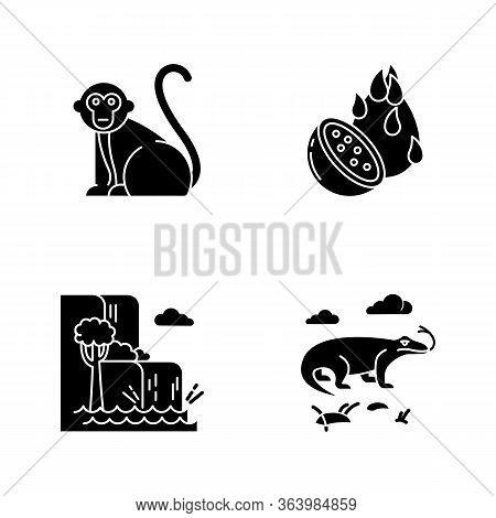 Indonesia Glyph Icons Set. Tropical Animals. Indonesian Islands. Exploring Exotic Wildlife. Unique F