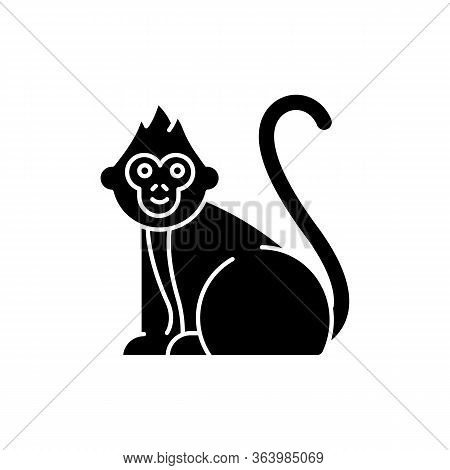 Baby Monkey Glyph Icon. Tropical Country Animal, Mammal. Exploring Indonesian Islands Wildlife. Cute