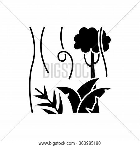Rainforest Plants And Trees Glyph Icon. Evergreen Forest Vines. Lianas And Fern Frond. Indonesian Ju