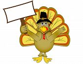 Thanksgiving turkey holding blank sign isolated on white poster