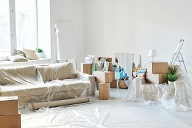 Room of new flat or house with couch, armchair, rolled rug, packed boxes, paintings, domestic plants, step ladder and other stuff