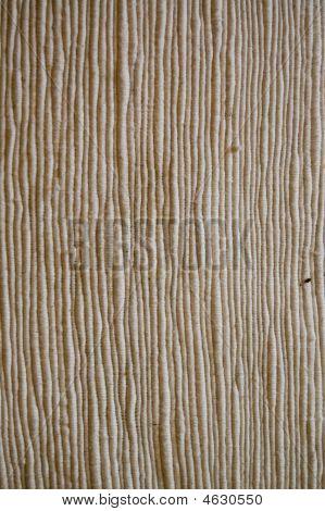 Texture-lined White Cotton Textile